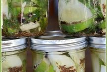 Canning and pickling / by Melody Holloway