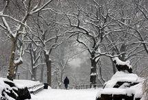 Winter Stuff/Ideas / by Lara Morina
