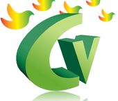 Calivirtual / SEO posicionamiento Web