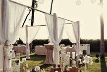 Tents & Canopies / Beautiful tents, beautiful canopies