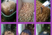 Pilzzucht im Garten / Pilze im Garten züchten - wie geht das? Wir experimentieren  mit verschiedenen Pilzbruten - und zeigen euch, was daraus geworden ist.