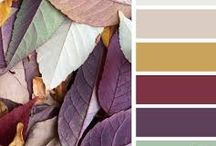 Triadic color