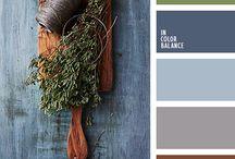 color palets
