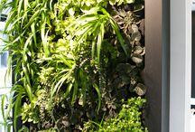 Eco home :)