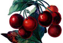 favorite fruits / by Laura Bryan