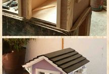 casitas de perro