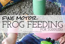 PRoject: frog/ béka