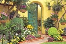 Curb Appeal / Add a little appeal to your front entrance.  Ideas to boost your curb appeal, welcoming entrances and more.