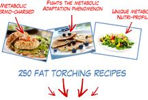 Metabolic Cooking - Fat Loss Cookbook / Metabolic Cooking - Fat Loss Cookbook http://www.metaboliccooking.com/index.php?hop=asapin