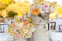 Flowers and Table decorations / by Amanda Hunt