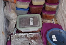 Freezer Meals / by Camille