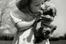 B - Barn m dyr