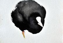 Birds - Water Birds