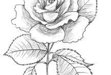 çiçek resimleri çizim