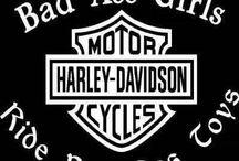 HARLEYS & HOGS! / by Lisa Grantham