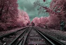 Photos: Infrared