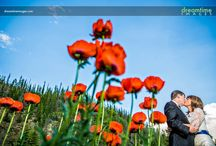 Breckenridge & Keystone Weddings / Wedding photography in Breckenridge and Keystone, CO