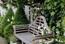 Gardenarium - Danusia Mlozniak