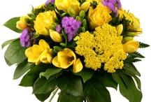 Fleurs violettes / Le violet : rêve, délicatesse, paix, amitié, méditation