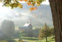 Commercial Farm