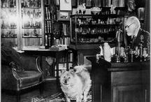 Sigmund Freud / Il primo vero abbozzo della teoria sessuale di Sigmund Freud che avrà poi un'influenza straordinaria sulla cultura in generale e sulla scienza psicologica in particolare. In questo libro Freud enuncia l'importanza della vita sessuale nella crescita dell'individuo, maschio e femmina, a partire sin dalla più tenera età. La lettura chiara e scorrevole è di Eugenio Farn.