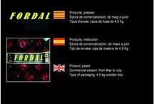 Torrents Viñas Fruits / Cooperativa de Fruita de Piera