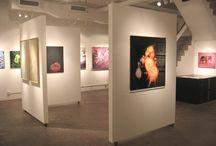 Interior Design // Art gallery & museum