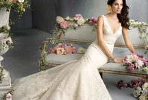 Wedding Dresses / Wedding gowns and more wedding gowns.