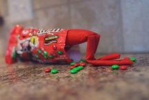 Christmas - Puma the Elf / by Meghan Manders Herrig