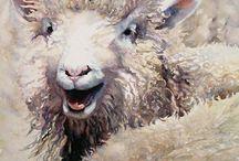 Watercolor beautiful sheep