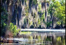 Louisiana / by John Rozas