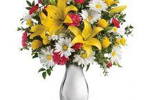 Roflora Lilies