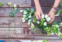 Spring Ideas and Inspiration / Ideas and inspiration for outdoor projects, kids activities, home DIY, gardening and other spring activities.