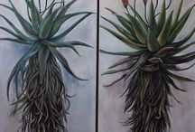 Aloe Art