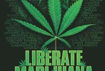 Liberate Cannabis! / 0