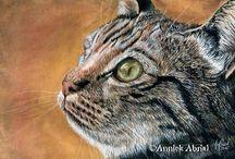 Portraits animaux à la gouache / Peintures, portraits à la gouache d'animaux, chiens, chats, animaux de compagnies animaux sauvages