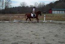 Neckstrap Improve your riding!