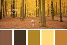 Add some colour! / Lovely colour combinations. Love the inspirational pics!