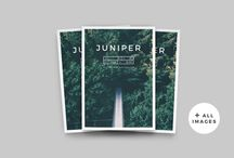 Magazine Templates / Wanna start your own zine but don't have the design know-how? You can buy a template!