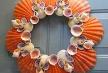 Seashels