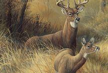 Animali dipinti