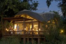 Sanctuary Chief's Camp, Okavango Delta, Botswana / Luxury Game Lodge  Sanctuary Chief's Camp is a luxury camp situated on Chief's Island in the exclusive Mombo Concession of the Moremi Game Reserve. This region is known as the 'predator capital' of Africa and is the ideal setting for game viewing.