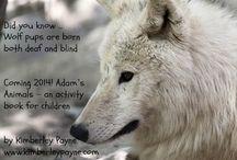Adam's Animals / Animals of the Bible