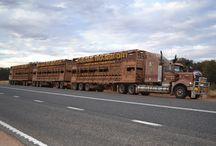Roadtrains & Trucks