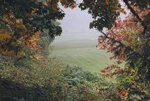 Bilder Herbst