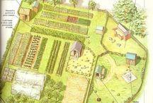 bahçe planlama