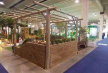 Aura Plants