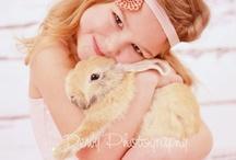 Bunny pics