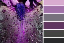 ColorCombinations