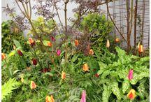 Tante Grøns have / Den mest vidunderlige have ligger i Flade på Mors. Der residerer Tante Grøn, Syrenprinsen og deres datter Emma.
